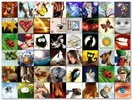 Thumbnail 100 Funny Avatars for Forums & MSN